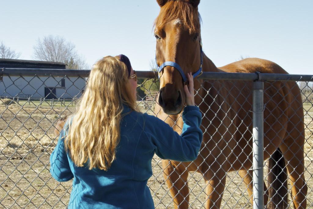 My friend Mr. Horse.